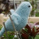Lille blå undulat fra Katarinas Nisser